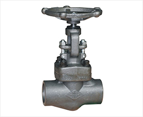 API 602 Forged Globe Valves-HFT Valve