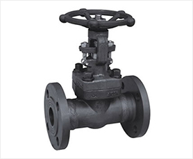API 602 Forged Steel Gate Valves-HFT Valve